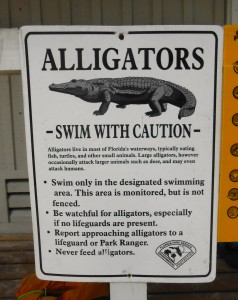 Caution Alligators - Pete Davies Music